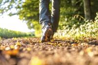 Savoring Walk